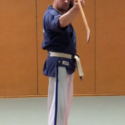 "Naginata ""halebarde"" combat long"
